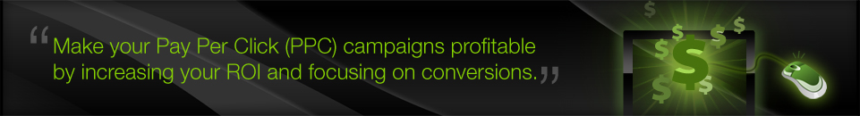 Make your Pay Per Click (PPC) campaigns profitable by increasing your ROI and focusing on conversions